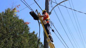 Lakeland Fibre Internet Expansion 2021